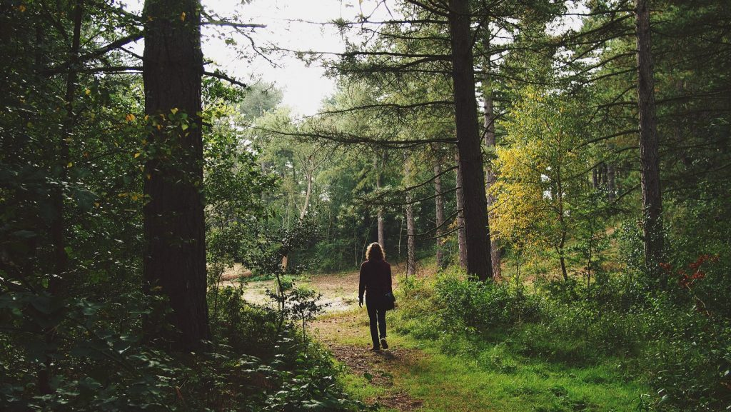 Meditative Walking: For the Body and the Mind
