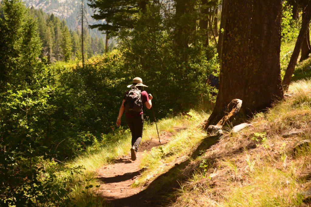 Walking to Prevent Chronic Disease